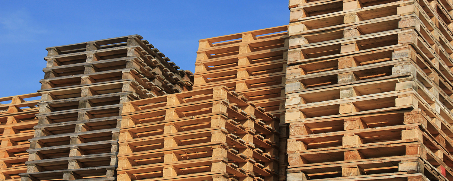 Report: Molded wood pallets sales on an upswing - Modern